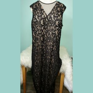Scarlett brand nude & sequin black lace gown